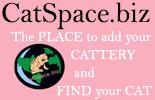 Catspace.BIZ